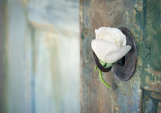 http://www.dreamstime.com/stock-photos-green-old-wooden-door-white-rose-opening-light-shining-hanging-key-image33999143